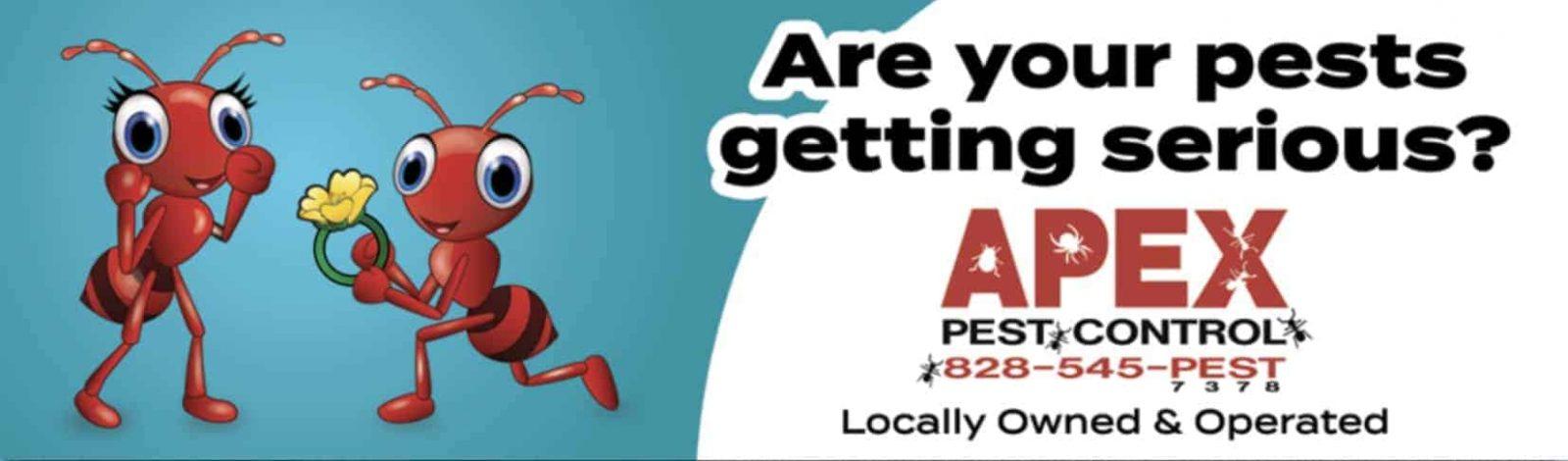 pest control asheville