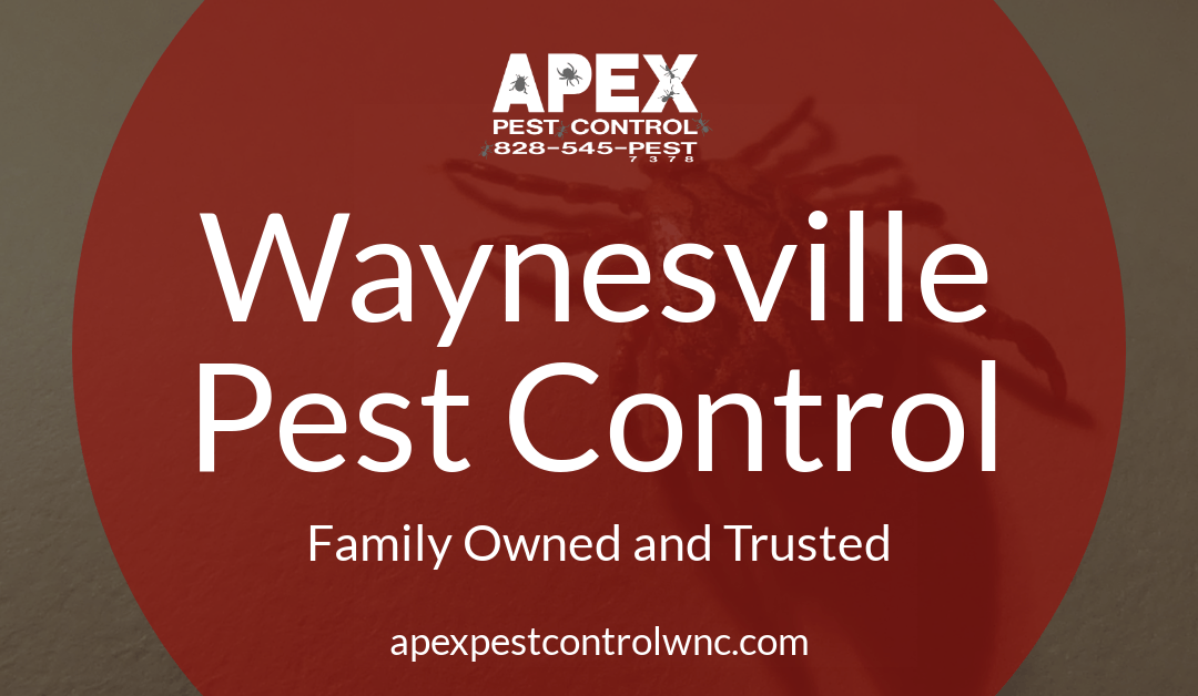 Waynesville Pest Control