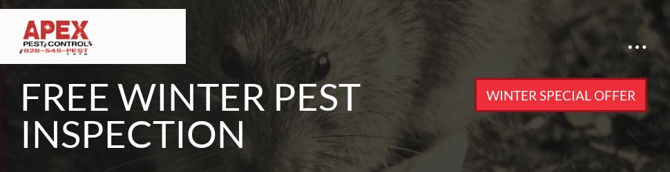 Pest Control Asheville 4
